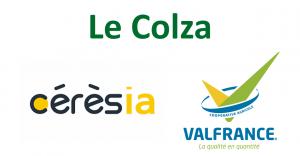 La filière Colza avec Cérésia et Val France